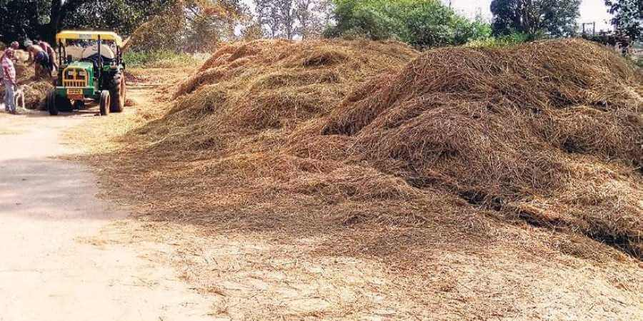 Indias First plant to convert paddy straw into biogas